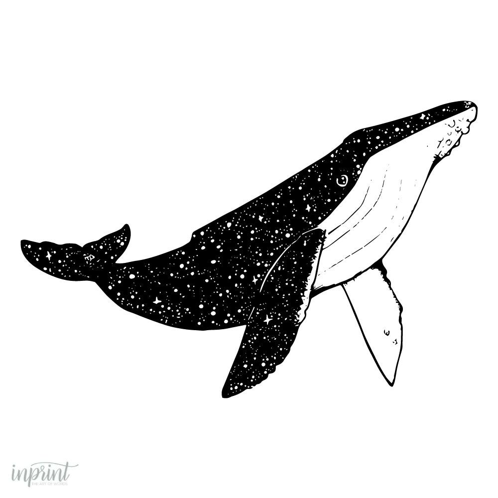 photo relating to Whale Printable referred to as House Whale Printable Downloadable Print - Immediate PDF printable