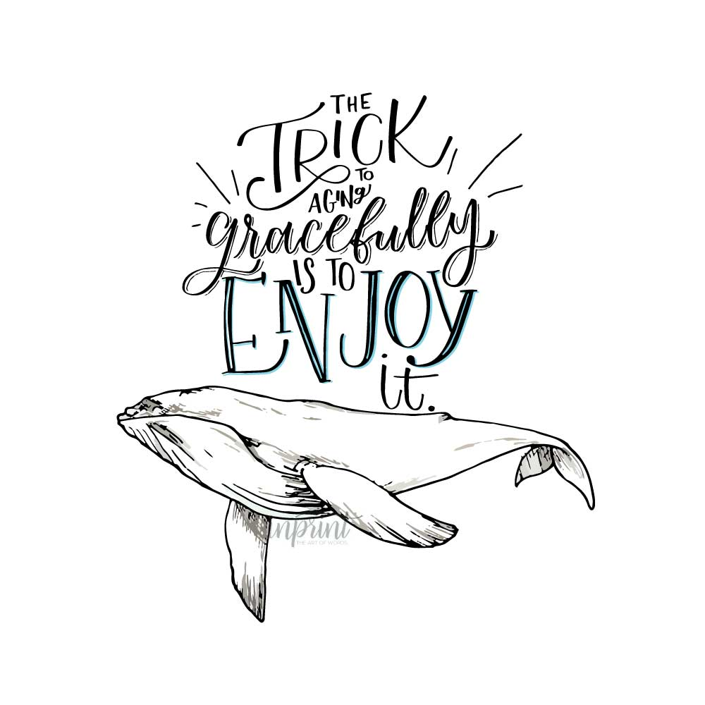 photograph about Whale Printable called Cost-free Whale Printable - Quick Printable PDF Report For Cost-free