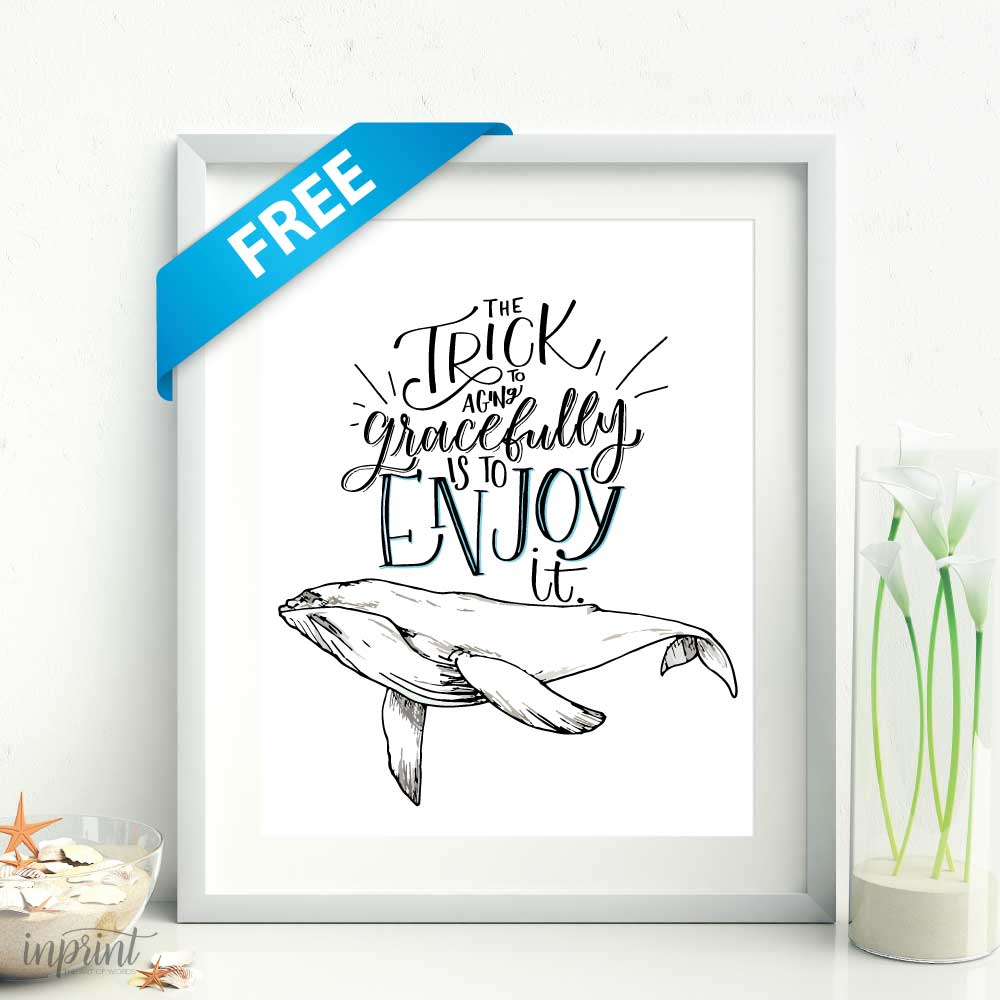 photo relating to Whale Printable known as Free of charge Whale Printable - Fast Printable PDF History For Free of charge